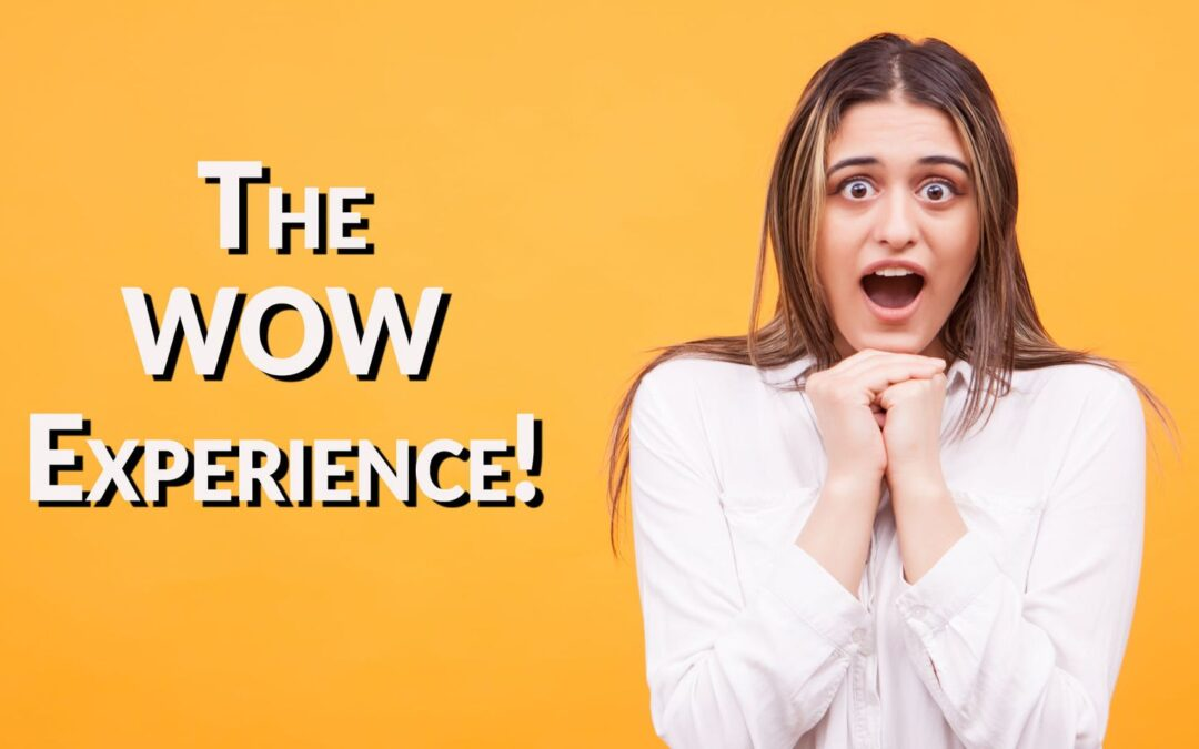 The Wow Experience